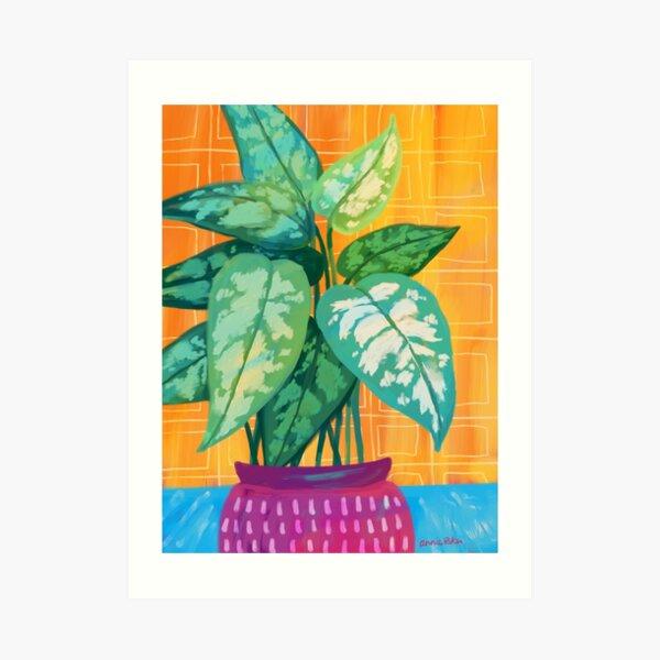 Chinese Evergreen Art Print