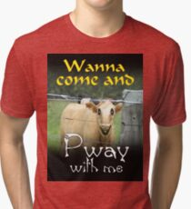 WANNA COME AND PWAY WITH ME Tri-blend T-Shirt