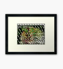 Redfield Experiment Framed Print