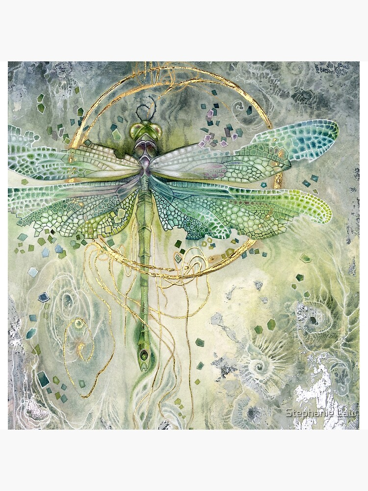 Green Dragonfly by stephlaw