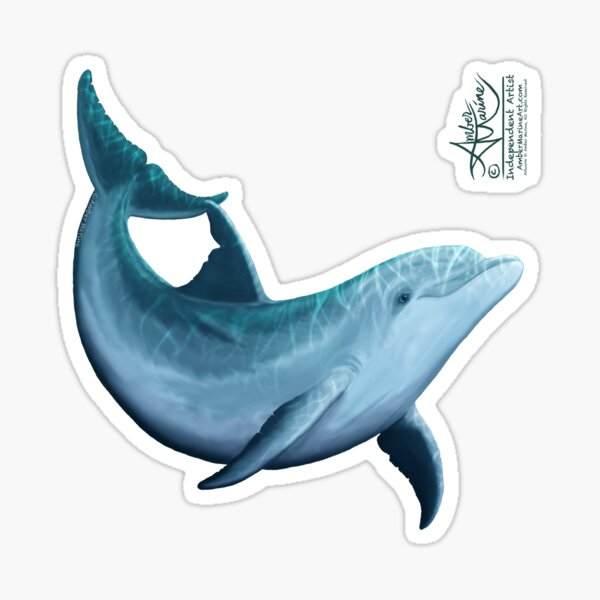 """""""Riversoul"""" by Amber Marine ~ Indian River Lagoon bottlenose dolphin art, © 2014 Sticker"""