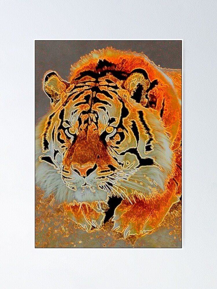 Alternate view of TIRED TIGER Poster