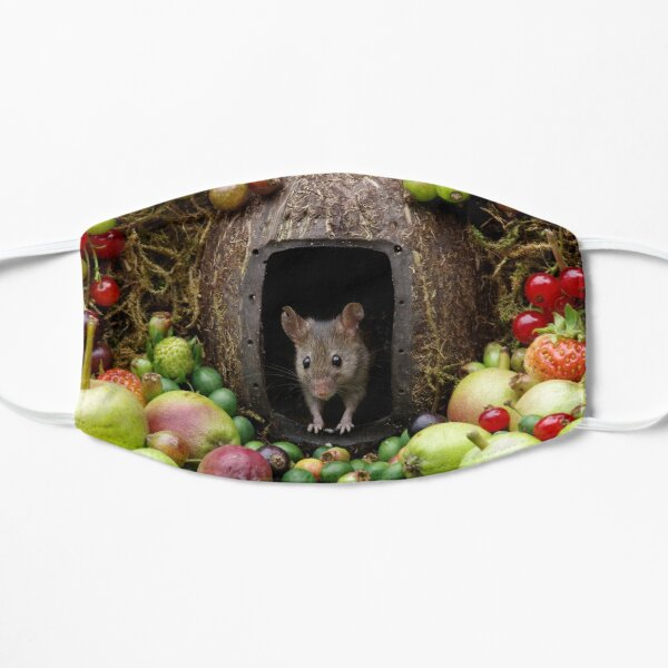 mouse with fruit  Mask