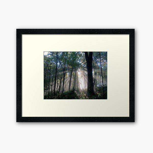 A Guiding Light Framed Art Print