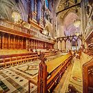 Magnificent Cathedral     ED2 by Raymond Warren