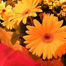 Macy's Flower Show 2013, New York City by lenspiro