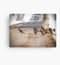 County Road Crew Canvas Print
