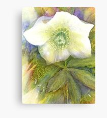 You'll have to come closer to see my inner beauty! Canvas Print