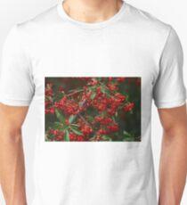 Pyracantha Berries Unisex T-Shirt