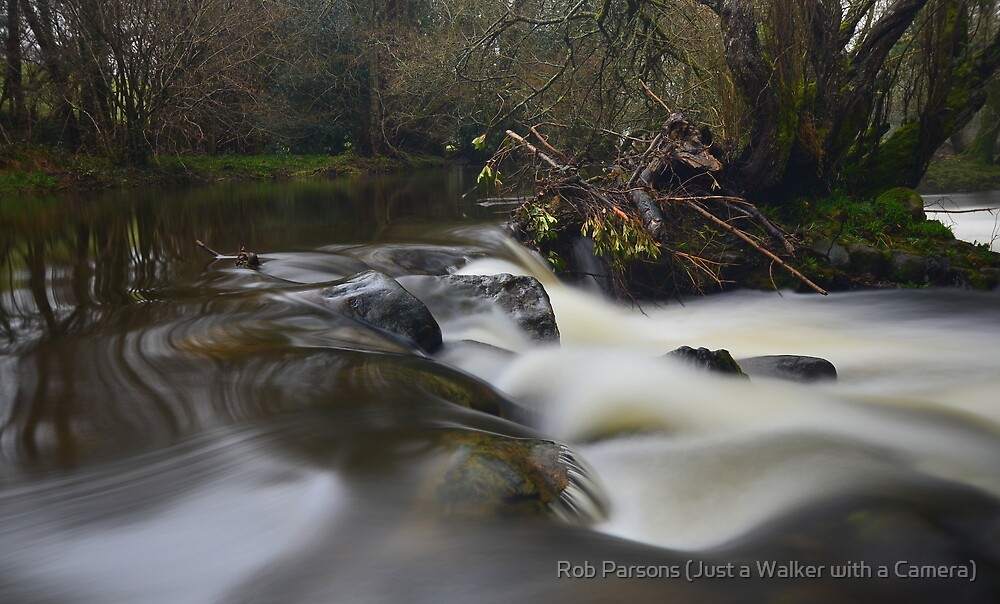 Dartmoor: The River Teign by Robert Parsons