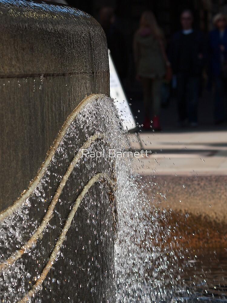 Splash by Paul Barnett