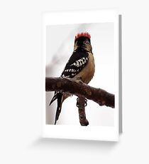 A little bit of humor: The Punk Greeting Card