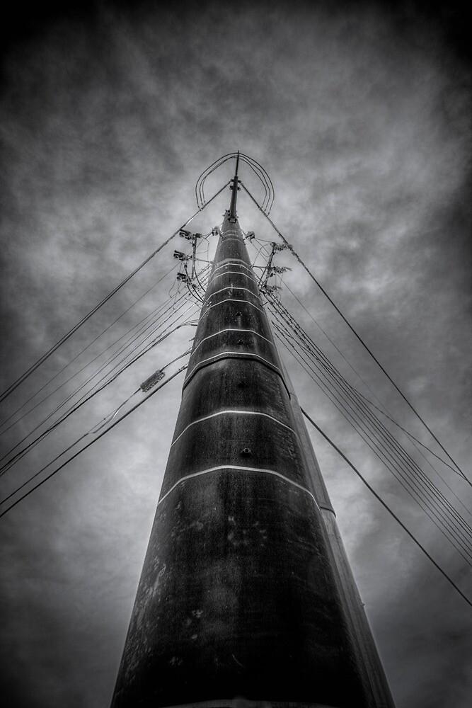 Electric Arrow by Bob Larson