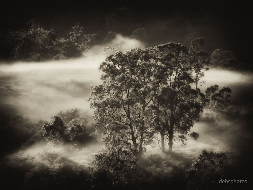 Carpeted Mist.. by debsphotos