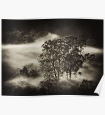 Carpeted Mist.. Poster