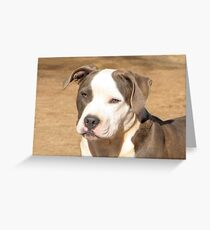 Gorgeous Grace ~ Greeting Card