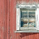 The window by cherylc1