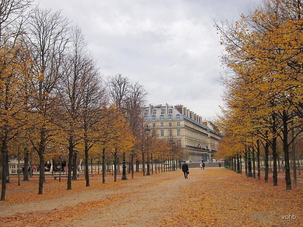 Autumn In Paris by vonb