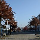 Berlin by vonb