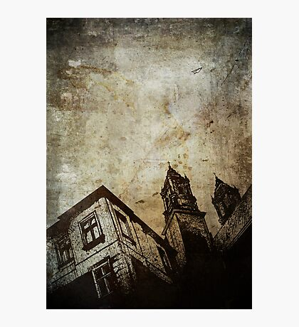 Volitant Photographic Print