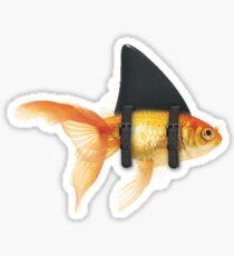 BRILLIANT DISGUISE 02 Sticker