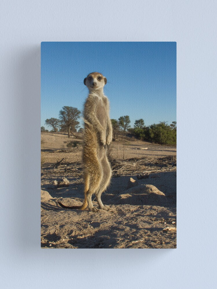 Alternate view of Standing tall Canvas Print