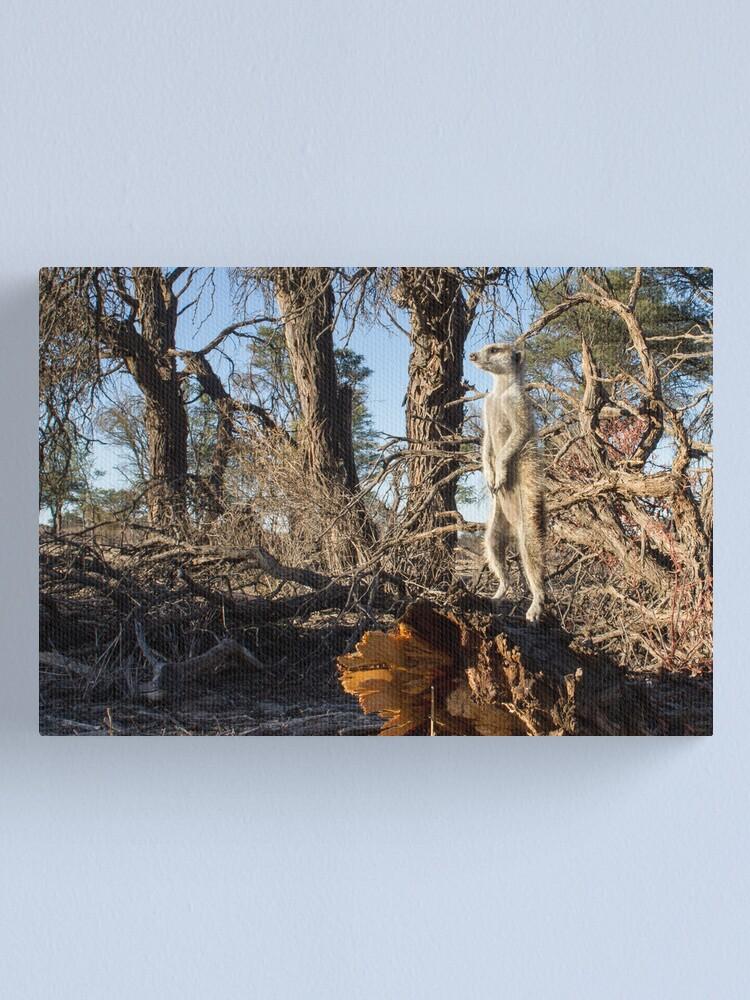 Alternate view of Raised guard Canvas Print