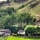 Greenbank Farm by Tom Gomez