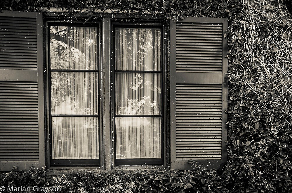 Shuttered Window by m E Grayson