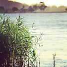 Shining Waters by NinaJoan