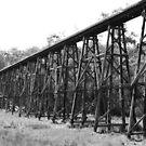 The Stony Creek Trestle Bridge by MissyD