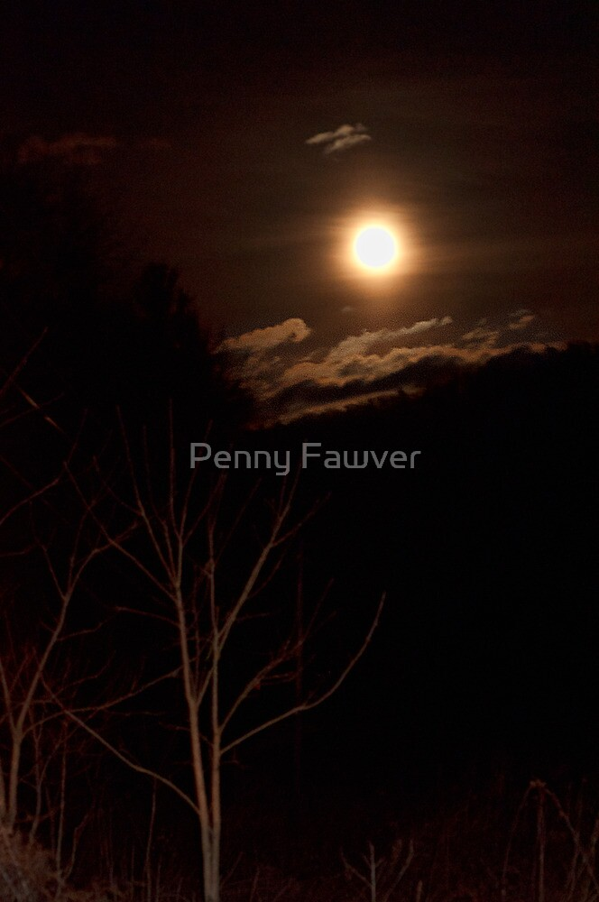 Moonlight by Penny Fawver