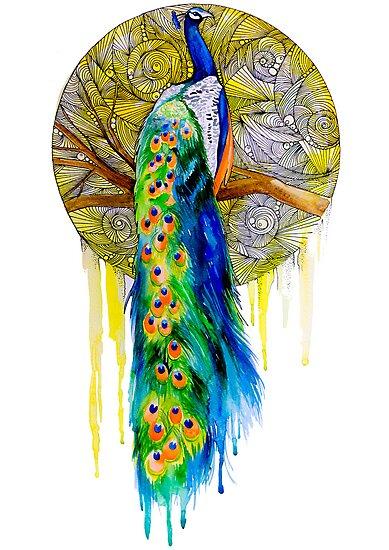 Peacock by Slaveika Aladjova