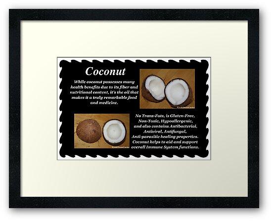 Coconut by DreamCatcher/ Kyrah