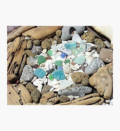 Beach Seaglass Shells Art Prints Driftwood Agates Fossils Photographic Print