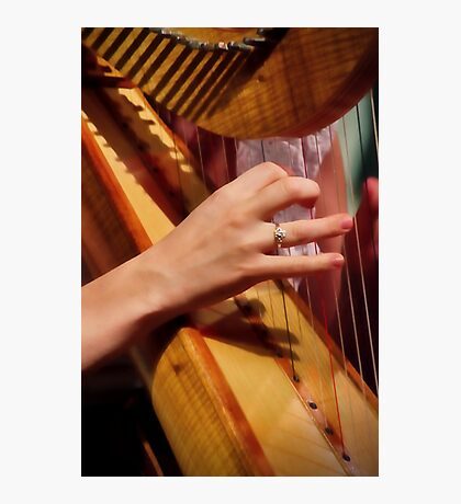 """Celtic Strings"" Photographic Print"
