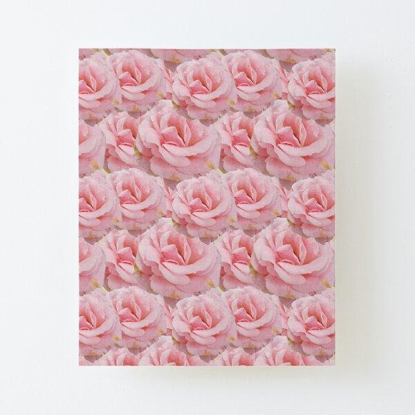 Duggins Castle Cottage Rose, Pale Pink Flowers  Canvas Mounted Print