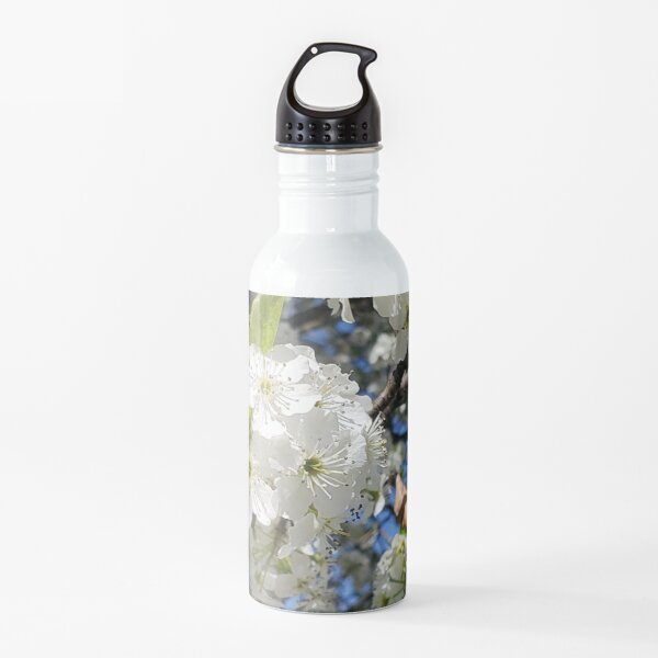 Glorious tree blossoms and blue skies Water Bottle