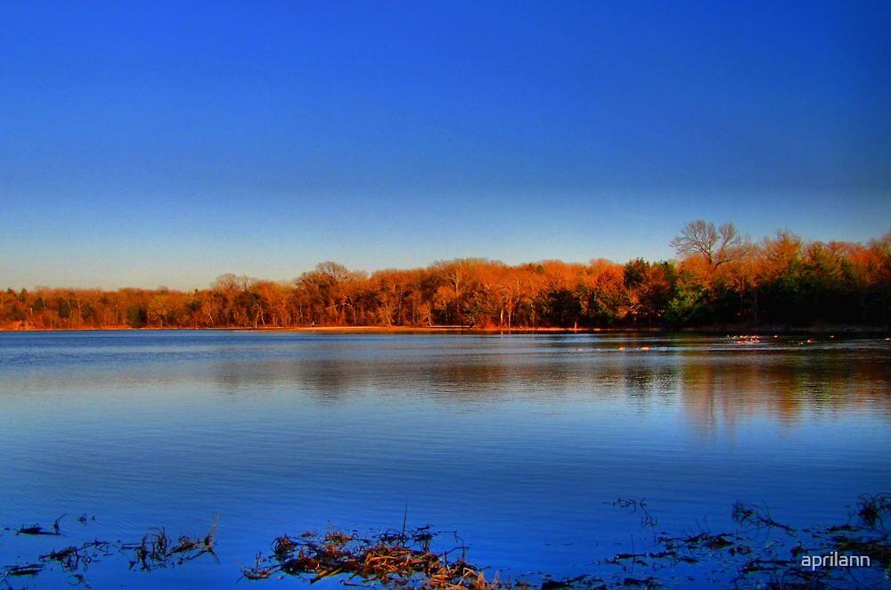 Herman Baker Park - Lake Pickens by aprilann