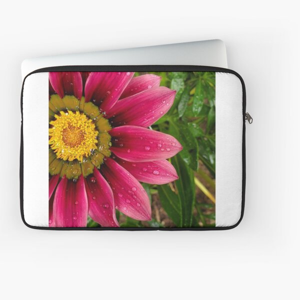 Echinachea flower with morning raindrops Laptop Sleeve