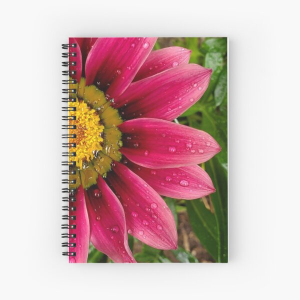 Echinachea flower with morning raindrops Spiral Notebook
