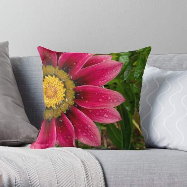 Echinachea flower with morning raindrops Throw Pillow