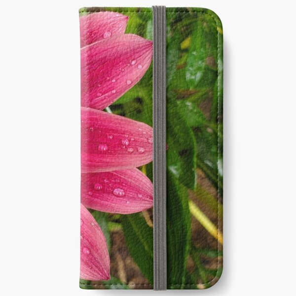Echinachea flower with morning raindrops iPhone Wallet