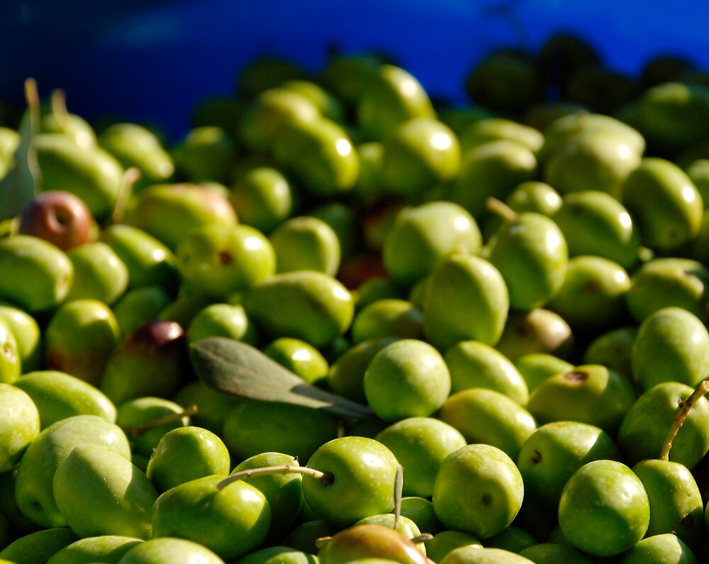 Green Olives in Natural Light by jojobob