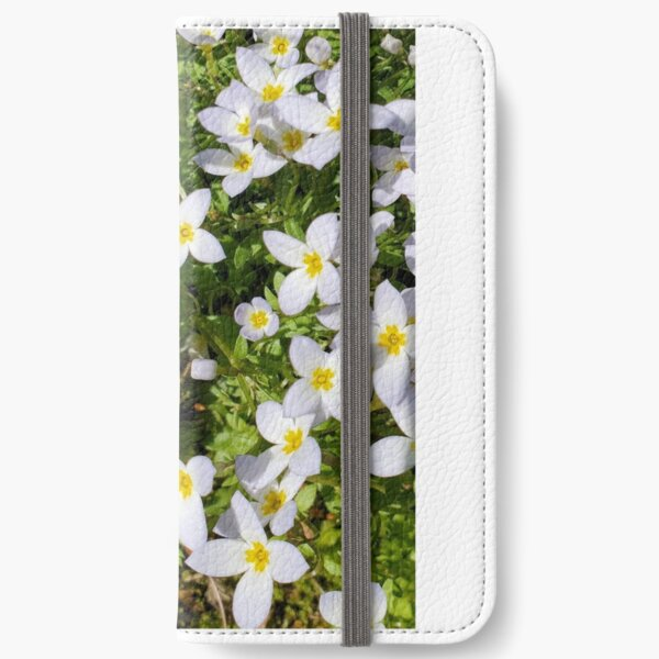 Bluet on the Lawn iPhone Wallet