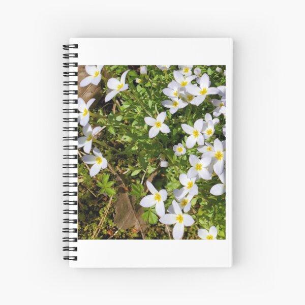 Bluet on the Lawn Spiral Notebook