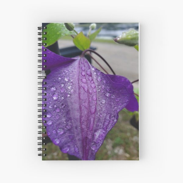 Purple Clematis with Raindrops - close up Spiral Notebook