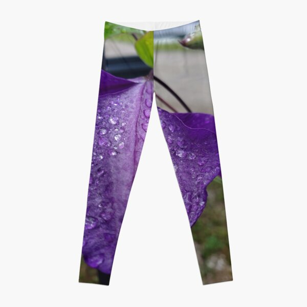 Purple Clematis with Raindrops - close up Leggings