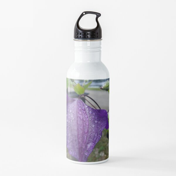 Purple Clematis with Raindrops - close up Water Bottle