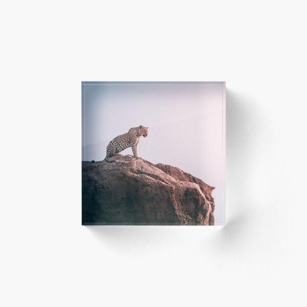 tiger Acrylic Block